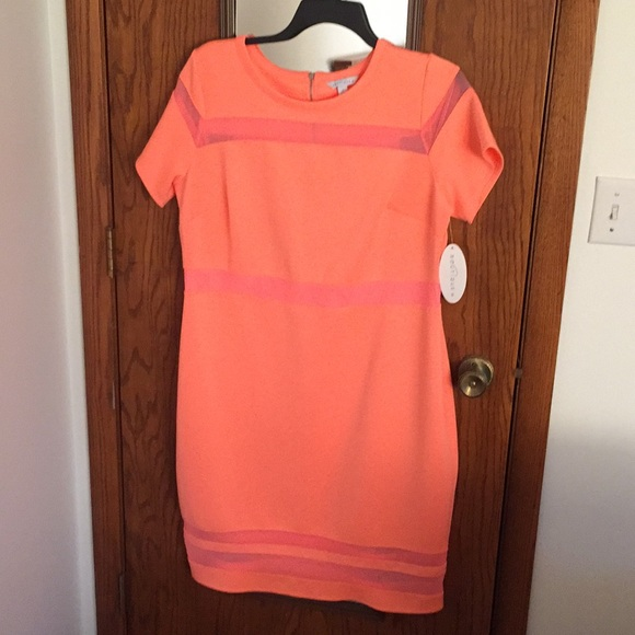 Boutique women\'s plus size dress 1x vacation coral NWT